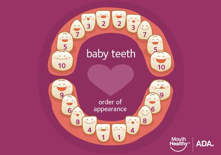 article_baby_teeth